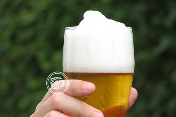 ¿Cómo nació el Día Internacional de la Cerveza?